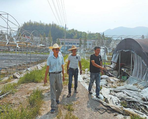 市农业农村局组织全体干部深入一线积极指导农户灾后自救