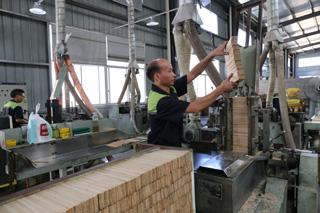 鸿叶笔业 工人生产软化板