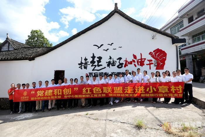 """""""党建和创""""红色联盟走进小章村"""