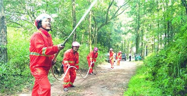 多部门组织进行森林消防演练