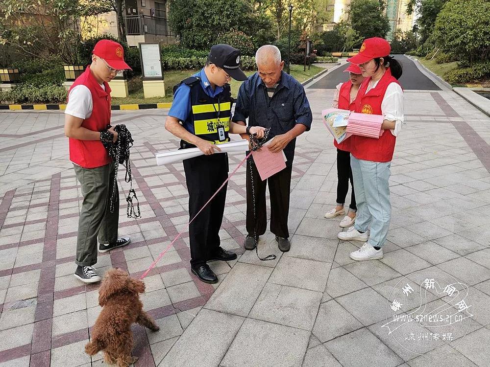 市综合行政执法局开展集中宣传活动