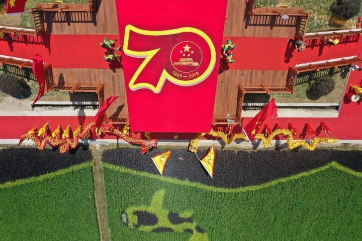 大气魄!稻田作画献礼新中国成立70周年