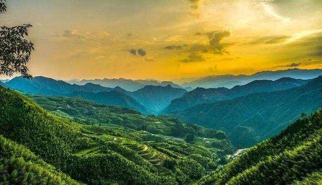 """創新實踐""""兩山""""理念 奮力開辟高質量綠色發展新路"""