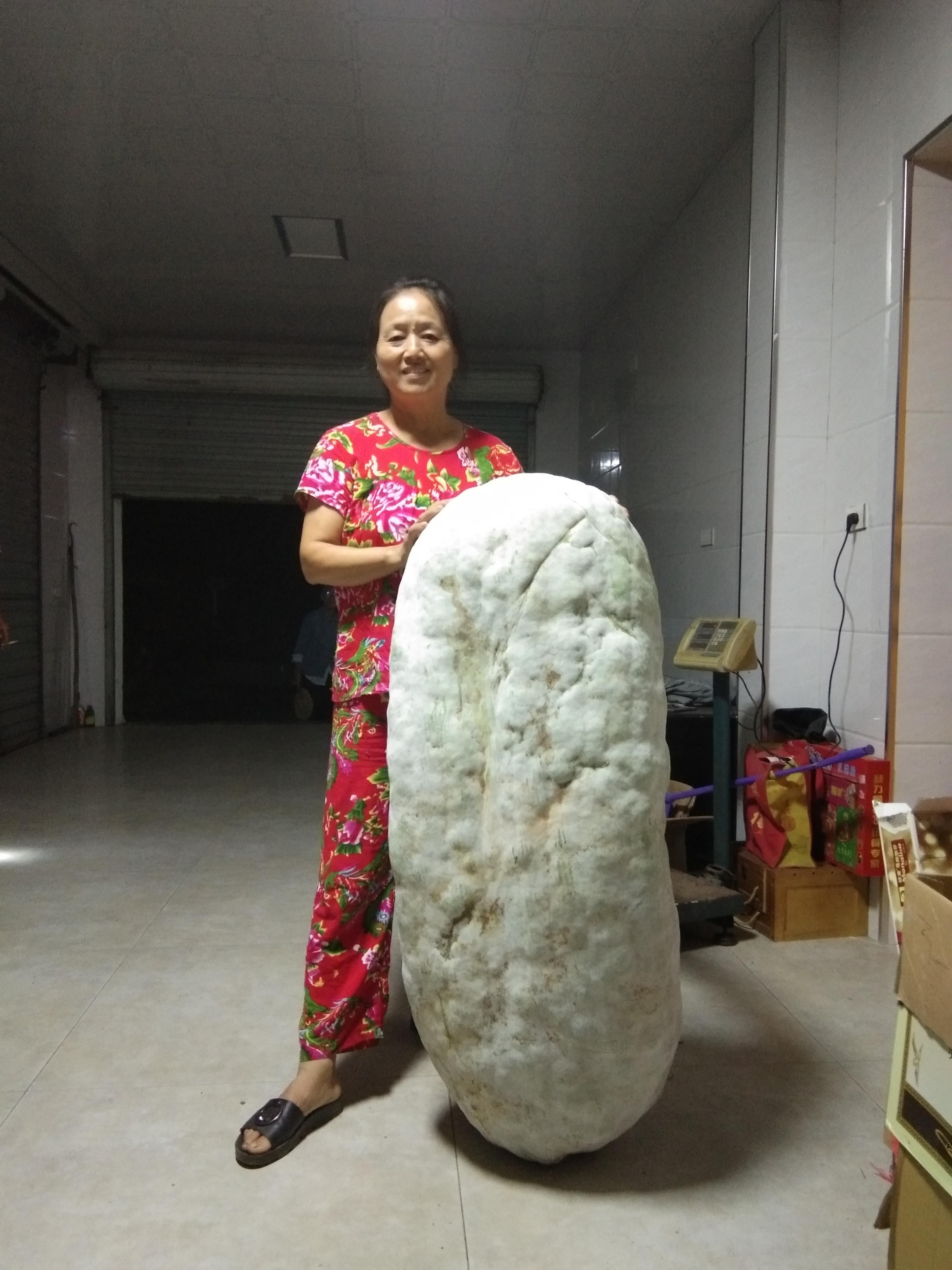 兰巨农妇收获151.5斤大冬瓜