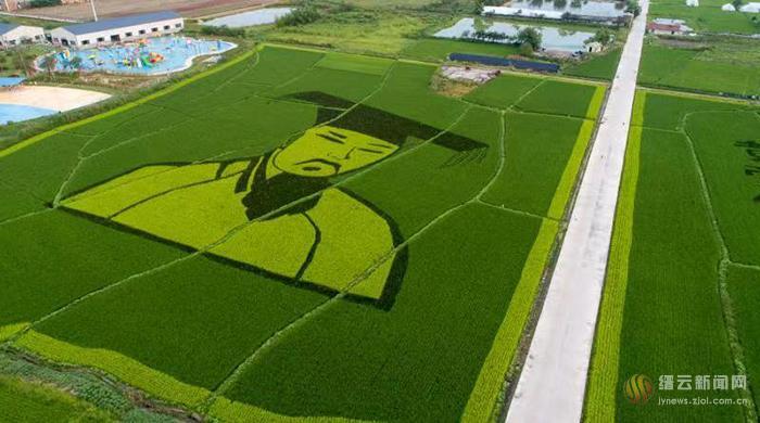 缙云县新建镇成功创建第二批省级农业特色强镇