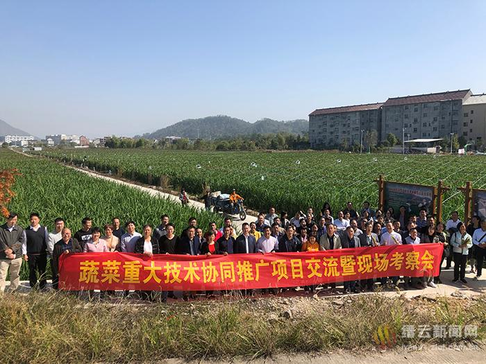 浙江省重大技术协同推广和产业技术团队项目交流总结会在缙云县举行