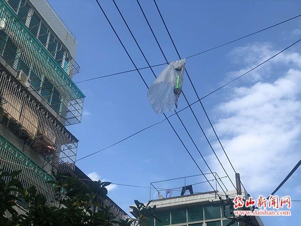 险!窗户飞出垃圾袋挂在高压线