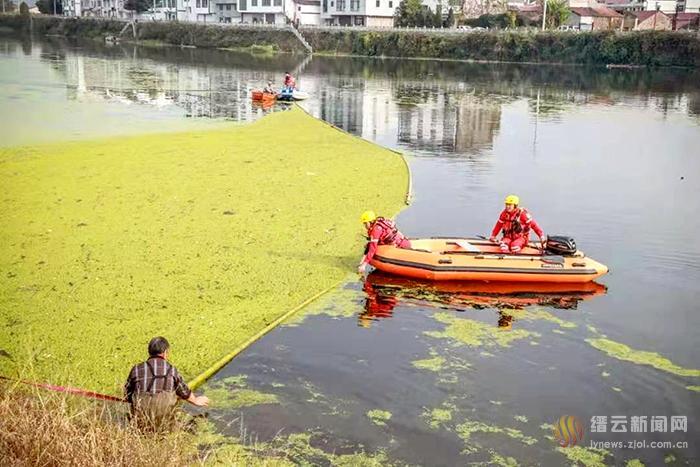 清理浮萍 还壶溪绿道整洁水域