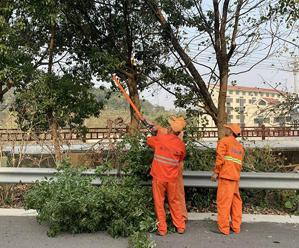 修剪绿化 确保安全