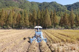 冬耕冬种 农户繁忙
