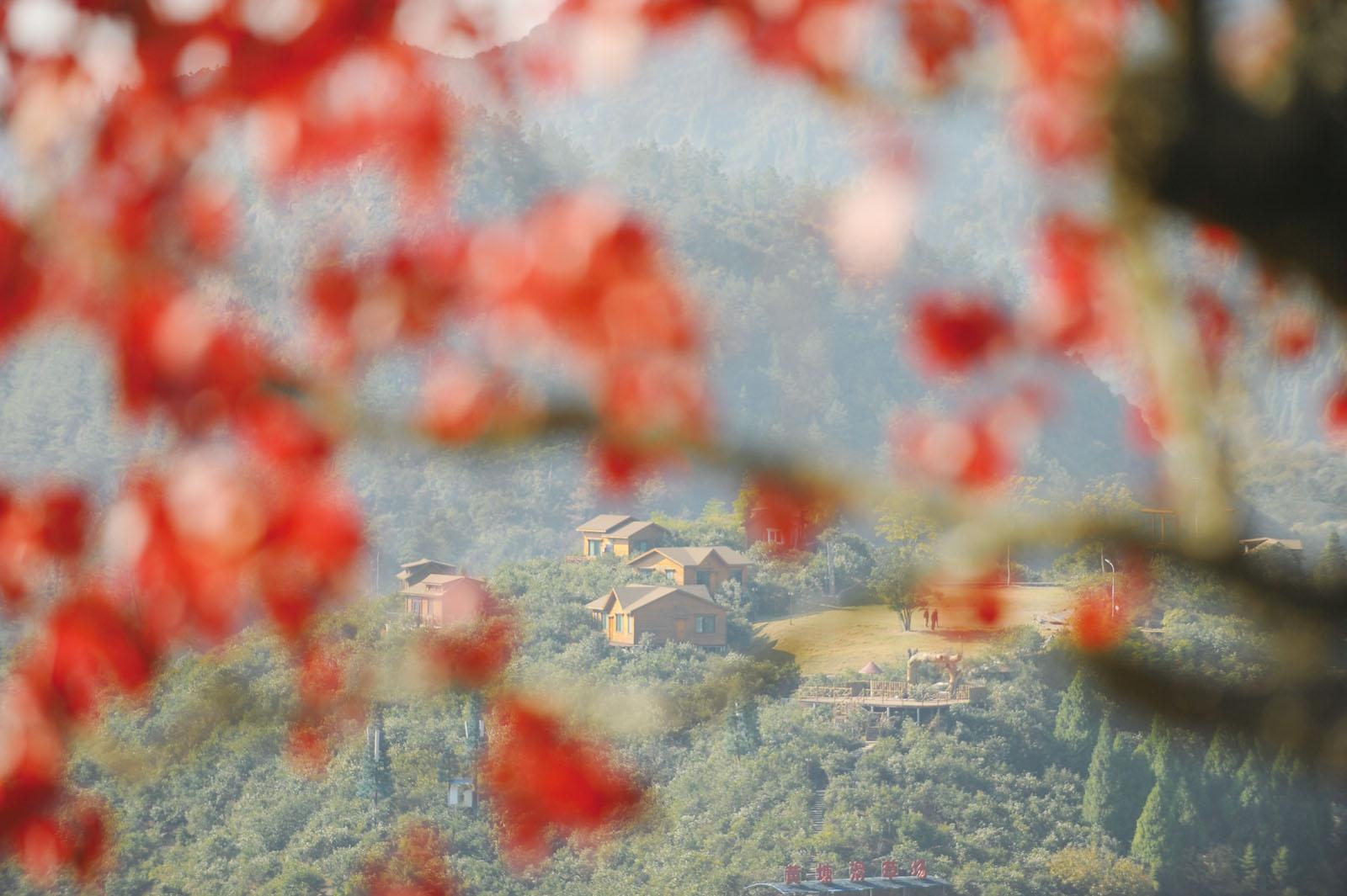 记录眼中的新昌风景