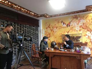 央视二套《生财有道》栏目聚焦庆元香菇