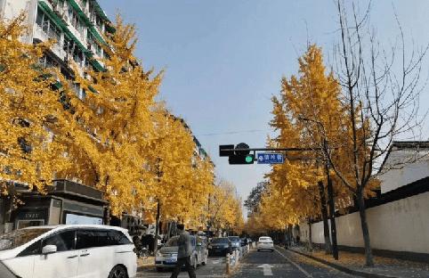 """周末氣溫繼續上揚 感受12月中旬的""""夏季"""""""