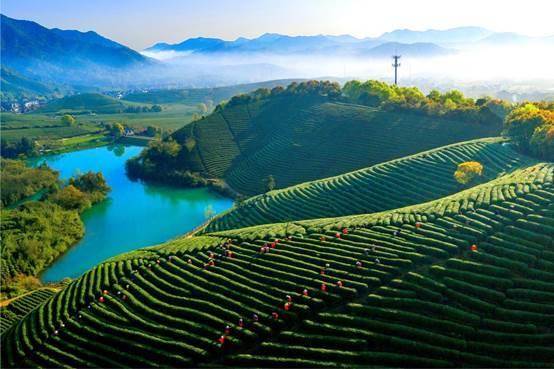 杭州3年內要打造118個美麗城鎮 來看看有你家嗎?