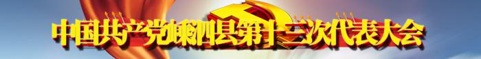 嵊泗党代会2020年专题