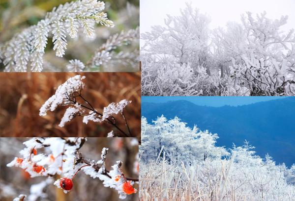 千树万树梨花开——西白山雾凇奇观【高清】