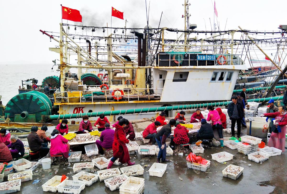 玉环渔民新春第一潮丰收了