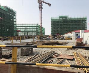 金枪鱼加工基地开足马力建设 有望今年10月投产