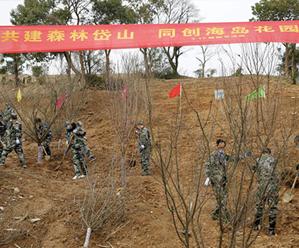 县四套班子领导参加义务植树活动