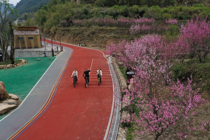 游客在骑行踏春