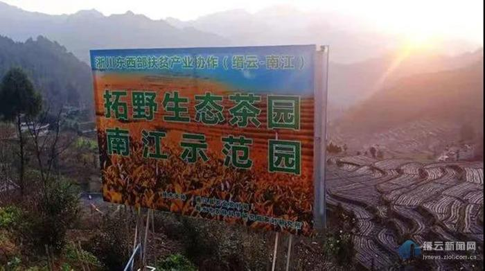 缙――南协作又增一色:绿