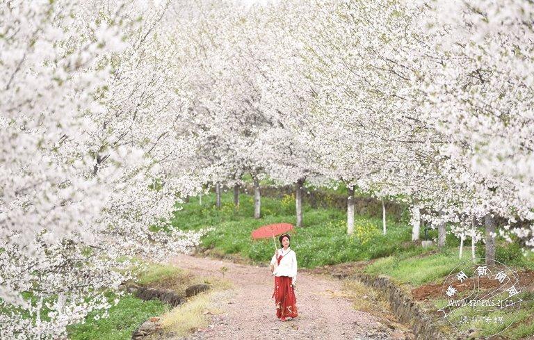崇仁镇打造特色美丽风景线推行全域乡村旅游