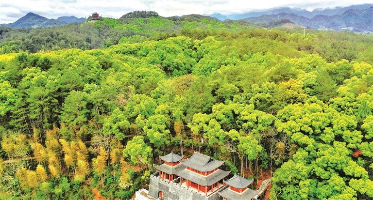 九姑山森林公园成为城市新的风景线