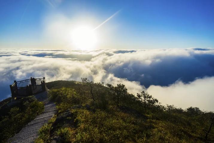 全面动起来,快步跑起来!龙泉市召开创建百山祖国家公园月度点评会