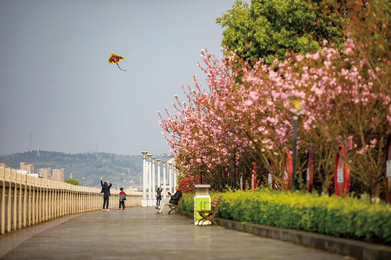 在这里和你分享春天