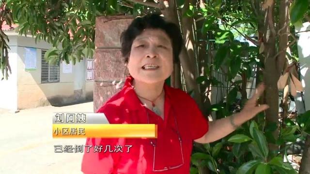 曝光台:建筑垃圾随意倾倒 实属不该!