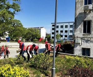 党员志愿服务 整治人居环境