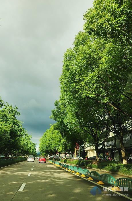 乌云下的阳光