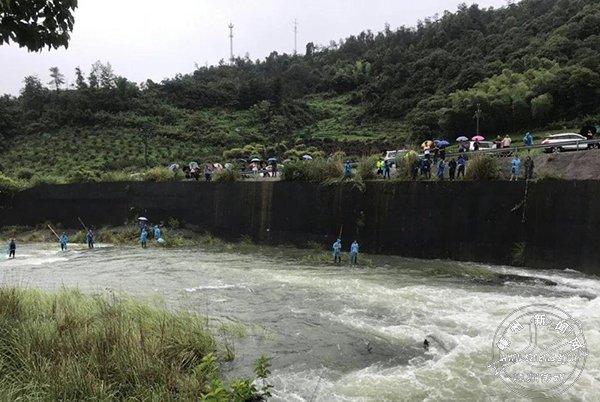 村民湍急水流中捞鱼 险!