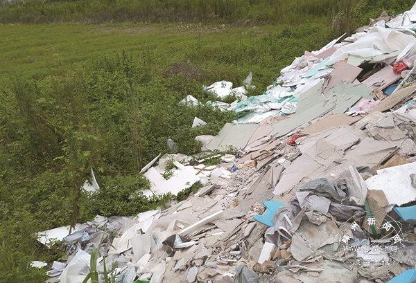 这条路边被倒了大量垃圾