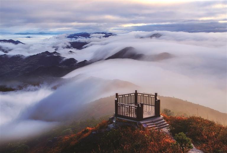 百山祖国家公园核心区――凤阳山风光