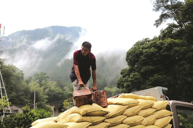 市农业农村局组织人员指导受灾群众开展灾后生产自救