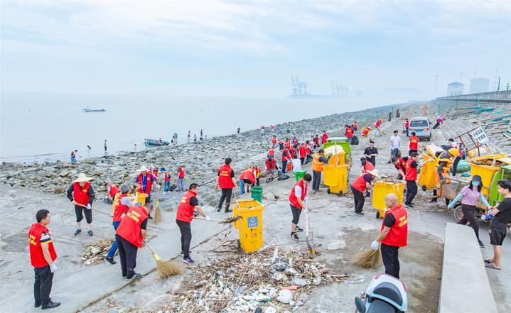 守護美麗海岸!平湖百名志愿者2小時清理6噸垃圾