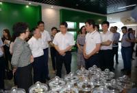 民盟省委会主委成岳冲率队赴衢州开展专项民主监督调研