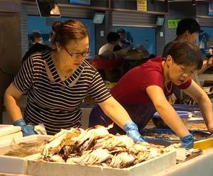 大批东海梭子蟹来啦