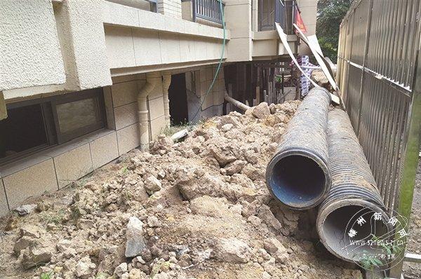 小区住户毁绿挖地为哪般?