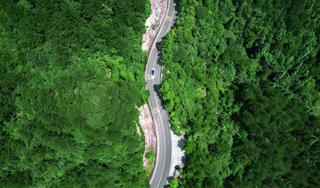 2020年庆元将改造提升农村公路112公里