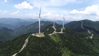 庆元双苗尖风电场景观提升工程正式完工