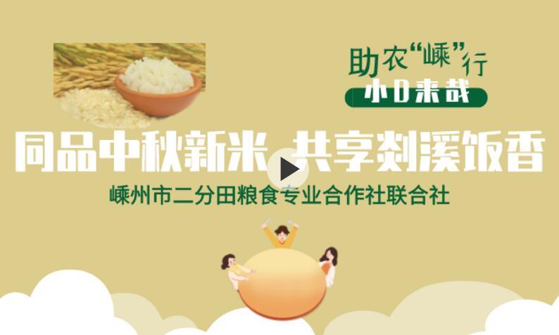 【视频】同品中秋新米 共享剡溪饭香