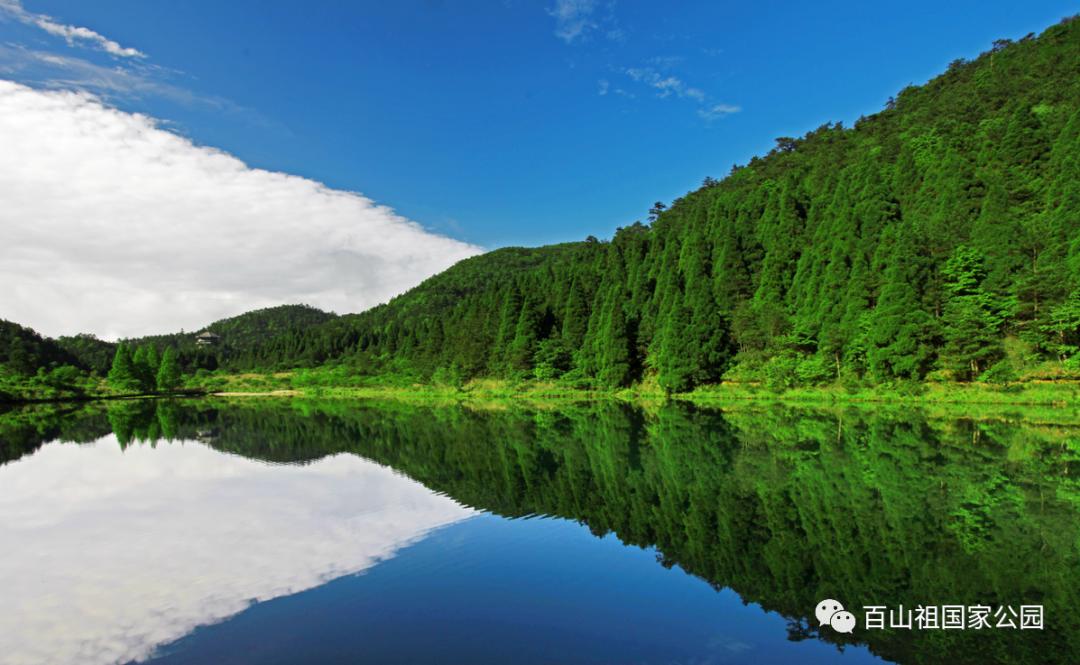 """百山祖国家公园就在浙江""""空气最好""""的地方!"""