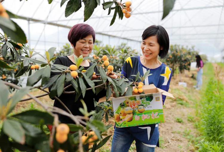 帮农户带货销售额破百万,宁波这位道德模范感染许多人