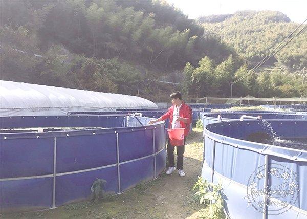 山溪山泉好养鱼 31岁小伙探索出一条绿色生态致富之路