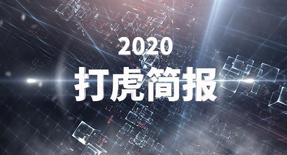 """2020""""打虎""""简报"""