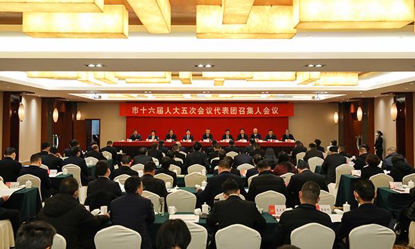 市十六届人大五次会议举行代表团召集人会议