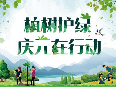 植树护绿 庆元在行动