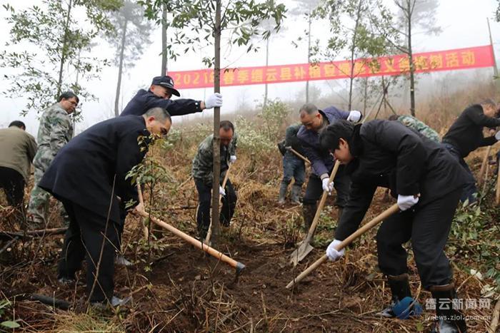 践行绿色司法 为森林添新绿